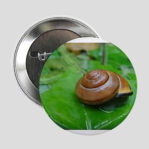 "Snail on Leaf 2.25"" Button"