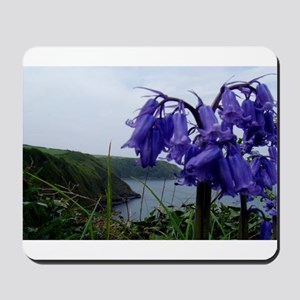 Welsh Bluebells Mousepad