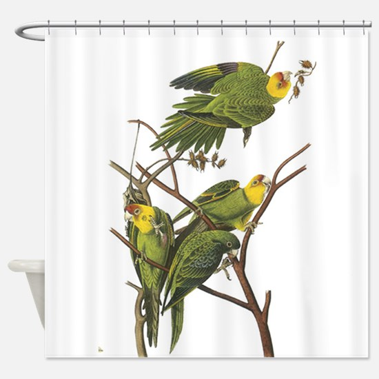 Carolina Parakeets Shower Curtain