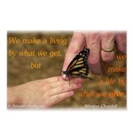 'Butterfly' Postcards (Package of 8)