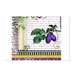 Vintage Plum Fruit Collage Postcards (Package of 8