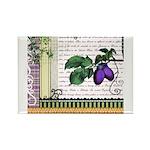 Vintage Plum Fruit Collage Rectangle Magnet (100 p