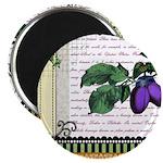 Vintage Plum Fruit Collage Magnet