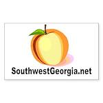 SouthwestGeorgia.net Sticker (Rectangle 50 pk)