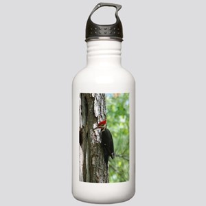 Pileated Woodpecker Stainless Water Bottle 1.0L