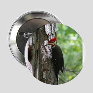 "Pileated Woodpecker 2.25"" Button"