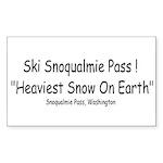 heavy_snow2 Sticker (Rectangle 50 pk)