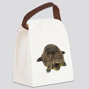 FIN-blandings-turtle Canvas Lunch Bag