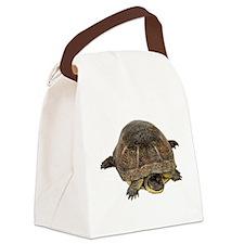 FIN-blandings-turtle Canvas Lunch Bag