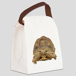 Tortoise Photo Canvas Lunch Bag