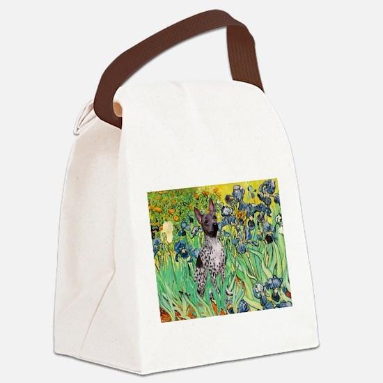 Irises-Am.Hairless T Canvas Lunch Bag