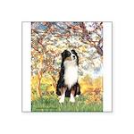 Spring - Tri Aussie 2 Square Sticker 3