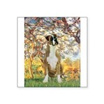 Spring with a Boxer Square Sticker 3