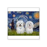 Starry / Coton Pair Square Sticker 3