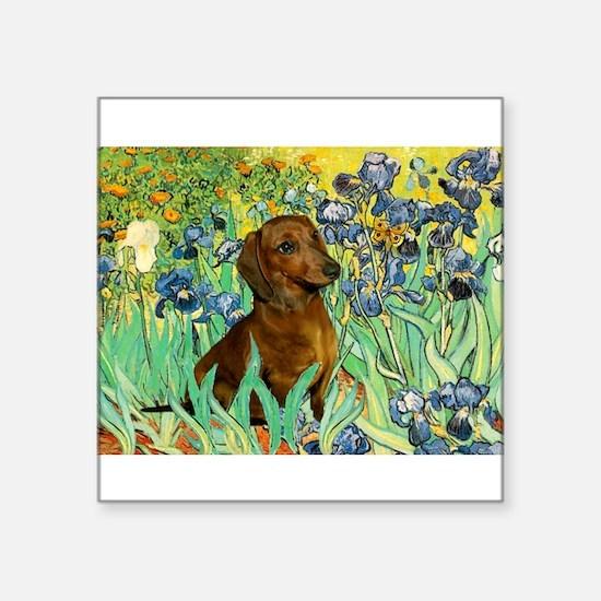"Irises & Dachshund Square Sticker 3"" x 3"""