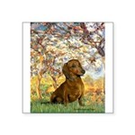 Spring / Dachshund Square Sticker 3