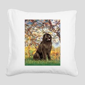 Spring / Newfoundland Square Canvas Pillow