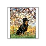 Spring / Rottweiler Square Sticker 3