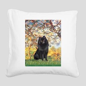 Spring & Schipperke Square Canvas Pillow