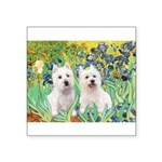 Irises-Westies 3and11 Square Sticker 3