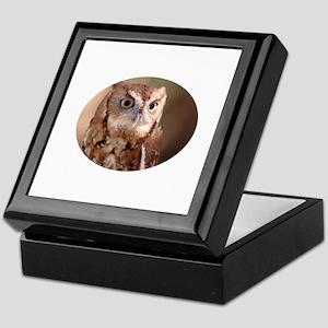 screech owl Keepsake Box