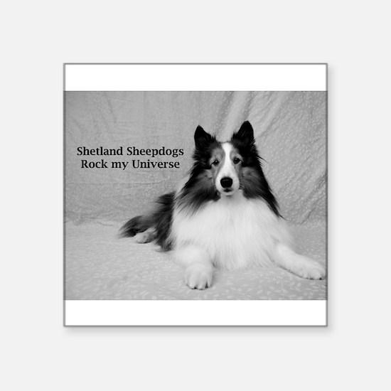 "Shetland Sheepdogs Rock my Square Sticker 3"" x 3"""