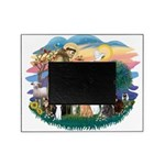 St Francis 2 - 7 Cats Picture Frame