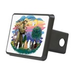 St Francis 2 - 7 Cats Rectangular Hitch Cover
