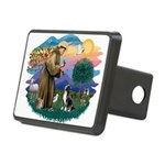 St.Francis #2/ Amer Sta Rectangular Hitch Cover
