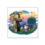 St.Francis #2/ Aus Shep (merl Square Sticker 3&quo