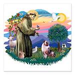 St.Francis #2/ Aus Shep (merl Square Car Magnet 3&