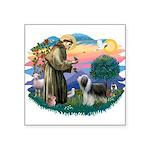 "St.Francis #2/ Beardie (sw) Square Sticker 3"""