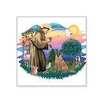"St.Francis #2/ Bel Malanois Square Sticker 3"""