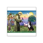 St Francis/Bernese Square Sticker 3