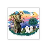 St Francis #2/ Bichon (2) Square Sticker 3
