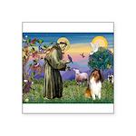 St. Francis & Collie Square Sticker 3