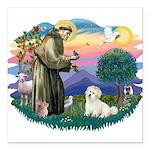 St.Francis #2/ Coton De Tulea Square Car Magnet 3&