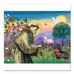 St Francis Doxie Square Car Magnet 3
