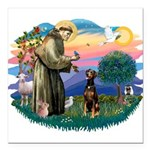 St Francis #2/ Doberman Square Car Magnet 3