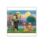 StFrancis-2Goldens Square Sticker 3