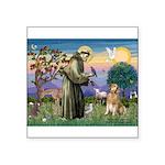 St Francis Golden Square Sticker 3