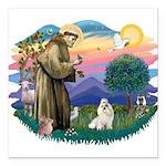 St.Francis #2/ Havanese (whit Square Car Magnet 3&