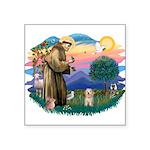 St.Fran. #2/ Havanese pup Square Sticker 3