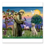 St Francis/Yellow Lab Square Car Magnet 3
