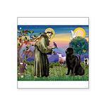 Saint Francis' Newfie Square Sticker 3
