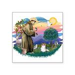 St.Francis #2 / Papillon (sw Square Sticker 3&quot