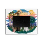 St.Francis #2/ Poodle (Std W) Picture Frame