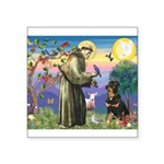 St Francis / Rottweiler Square Sticker 3