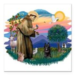 St.Francis #2/ Schippereke #4 Square Car Magnet 3&