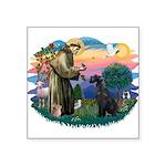 St.Francis #2/ Giant Schnauze Square Sticker 3&quo